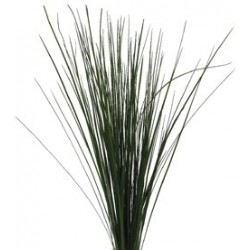 Steel Grass 30 Bunches