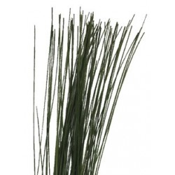Flexi Grass 30 Bunches